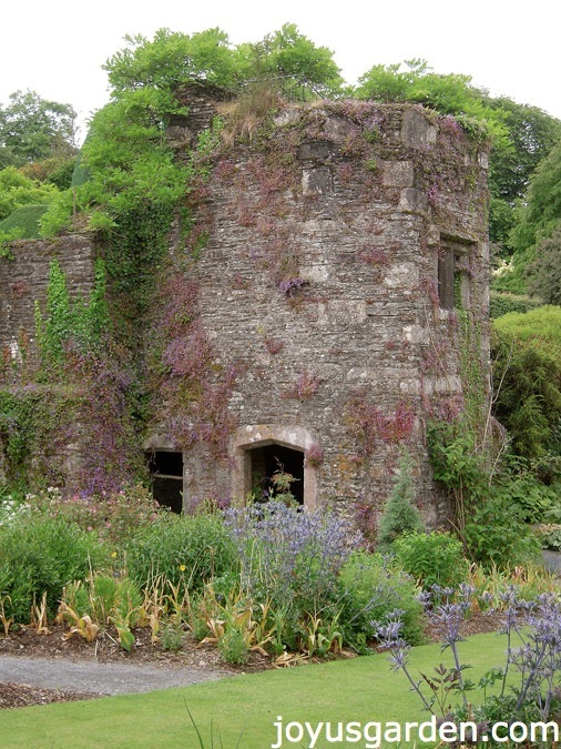 The Garden House, Devon, UK