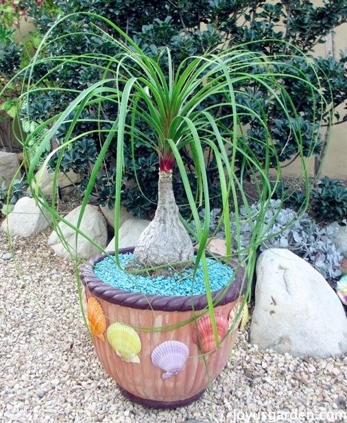 Decorating My Terra Cotta Pot