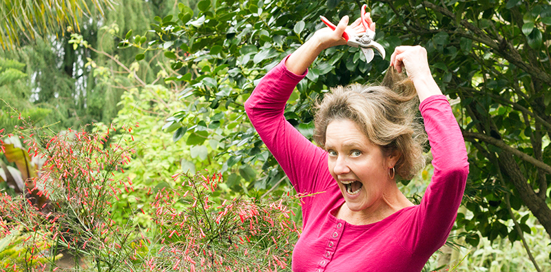 Nell Foster Pruning tips
