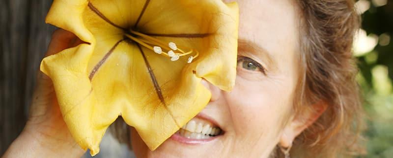 Nell Foster, yellow trumpet flower