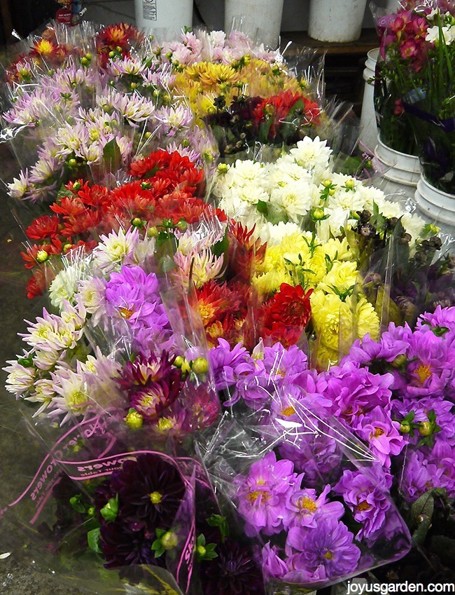 los angeles flower district Best los angeles florist sonny alexander flowers offers fresh flower delivery  los angeles save money by sending flowers directly with a local florist.