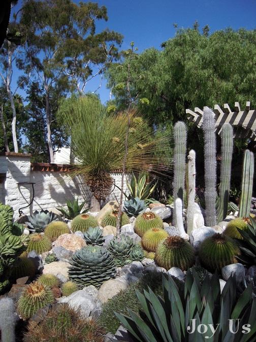 Stunning outdoor gardens
