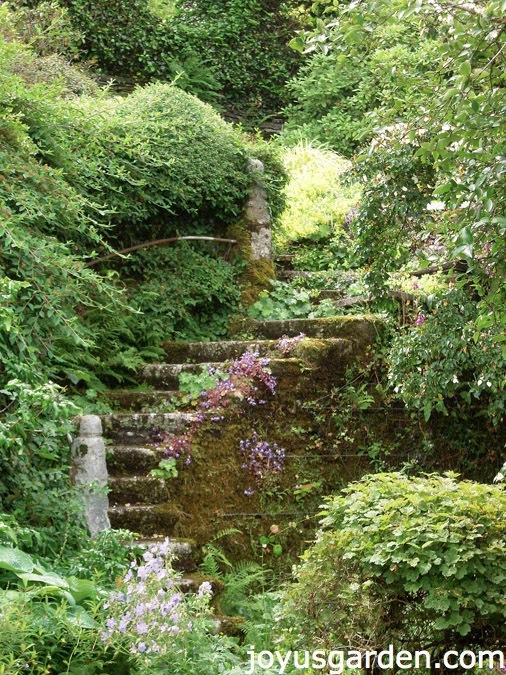 The Garden House, Devon, UK