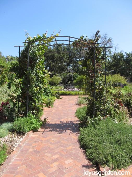 Beautiful archway in the herb garden