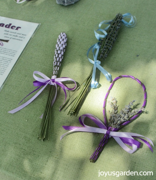 Lavender wands in the herb garden