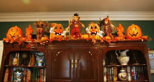 A collection of adorable pumpkins