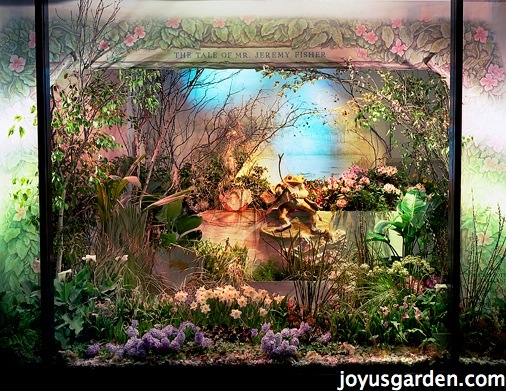 Peter Rabbit flower show