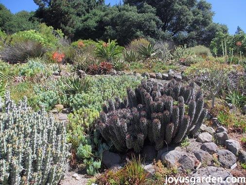 Gardens in Berkley