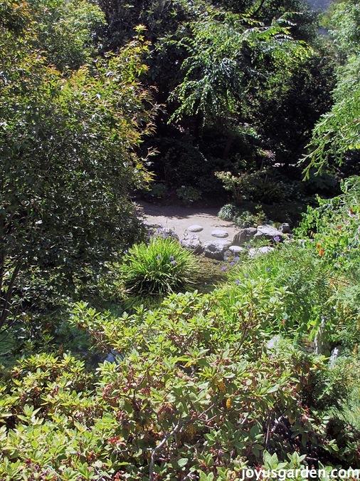 Japanese pool in the Berkeley Botanical Garden
