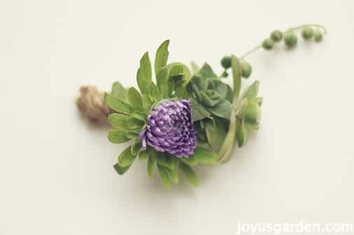 How To Make A Simple Succulent Boutonniere