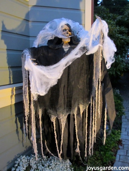 Spooky Halloween Decorations Outdoors
