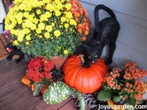 Porch decorations for Halloween