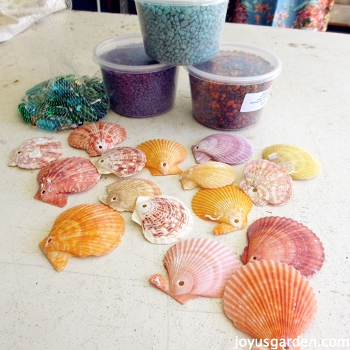 Shells and accessories for the terracotta pot