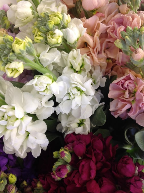 A stunning bouquet of mixed white and pink flowers