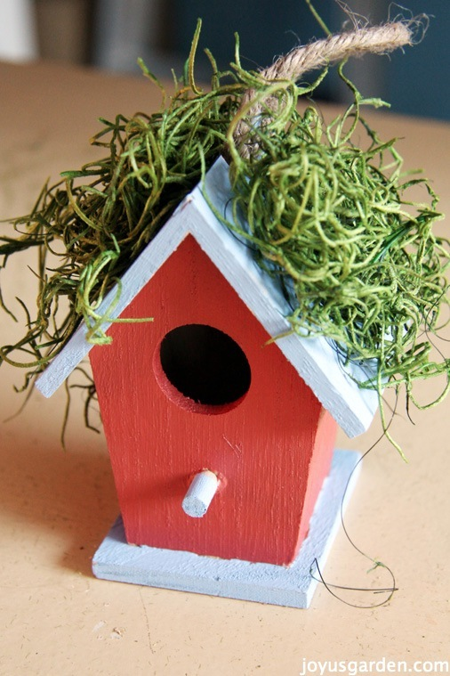 Birdhouse decorated with succulents