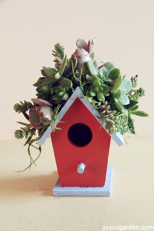 How To Create A Little Birdhouse Decorated With Succulents