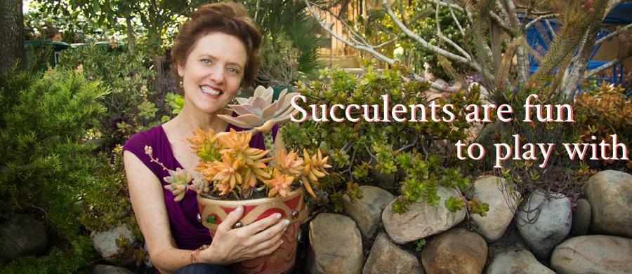 Joy Us Garden: Succulents
