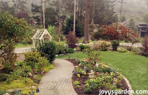A look at my California garden