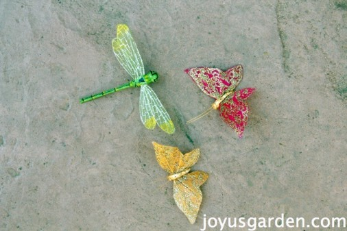 Butterflies and dragonflies as accents
