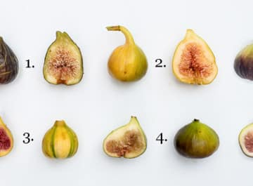 different kinds of figs