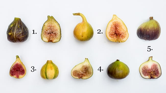Five Figs Friday