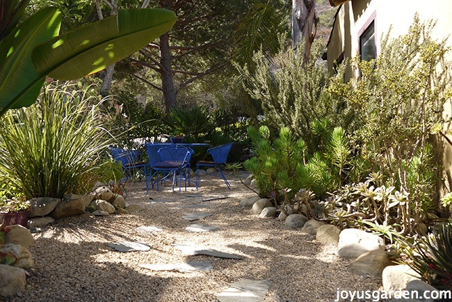 looking into a beautiful Southern California garden with a gravel hardscape & bright blue patio set