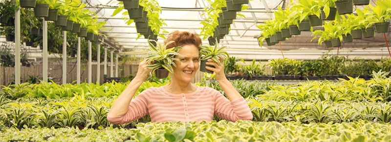 nell foster houseplants expert