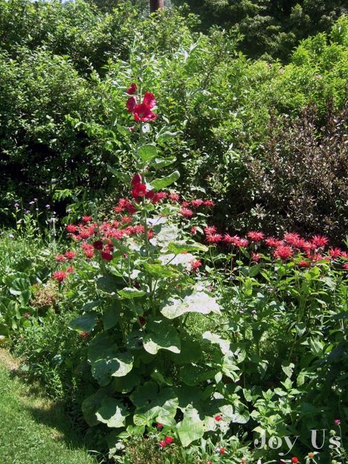 Gardens at the Glebe House