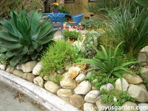 How Do I Prep The Soil For A Succulent Garden Joy Us Garden