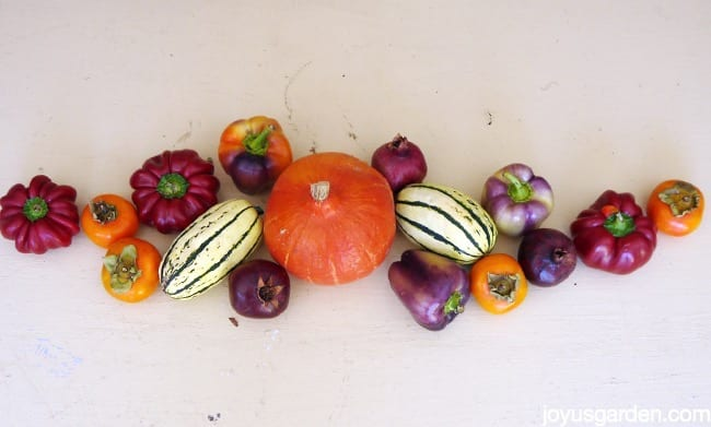 Lay out produce to get a feel for your design