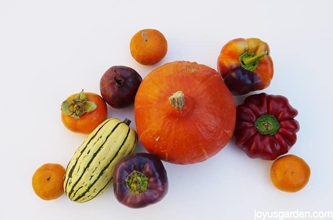 Fall harvest items
