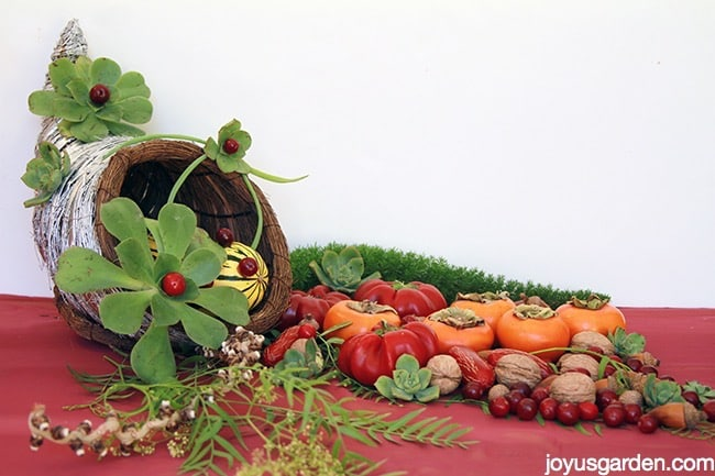 A Succulent Adorned Cornucopia With A Twist
