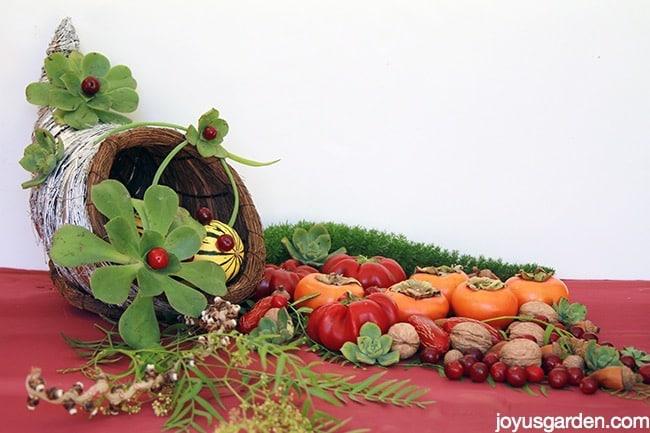 Succulent Adorned Cornucopia