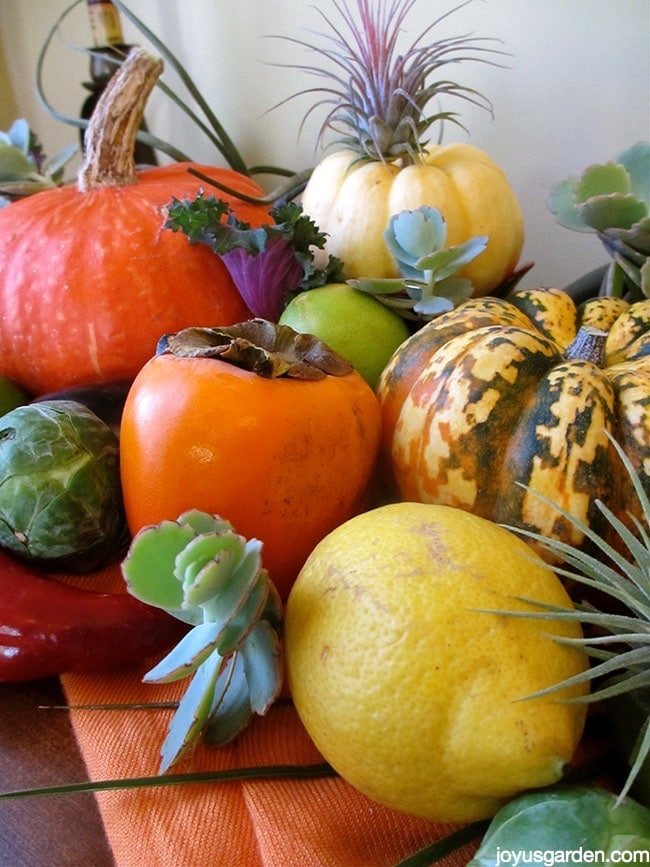fall centerpiece with produce
