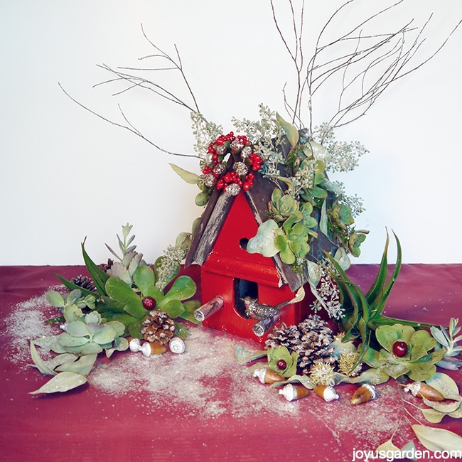 A Christmas Birdhouse With A Living Sparkling Succulent Roof