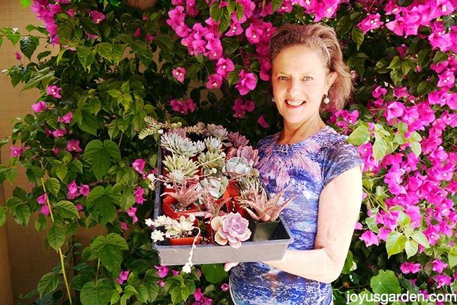 Nell Foster - Joy Us garden
