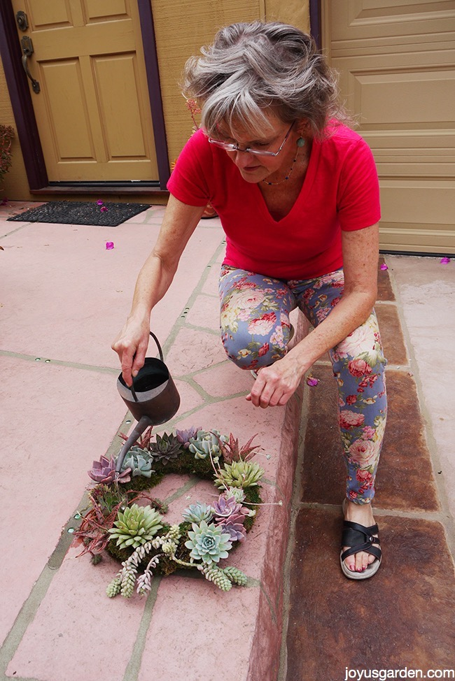 Care for succulent wreath