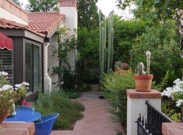 Tucson desert garden