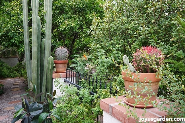 Gorgeous garden plans