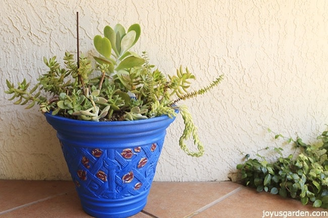 One Easy Way To Jazz Up A Plain Plastic Flower Pot