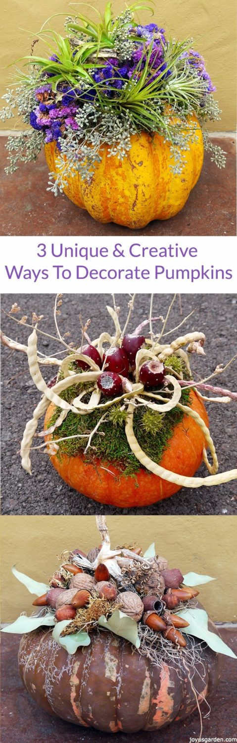 3 Unique Ways To Decorate Pumpkins Using Natural Ingredients