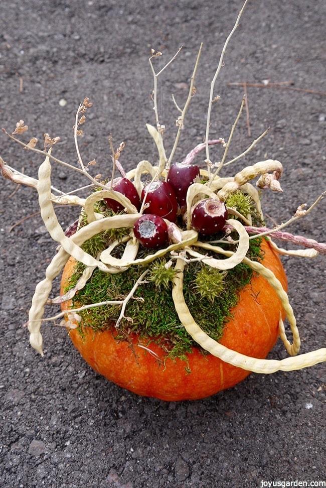 Gorgeous pumpkin decorations