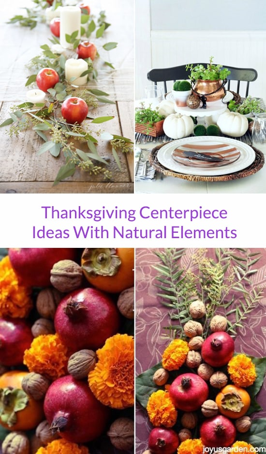 Thanksgiving Centerpiece Ideas With Natural Elements
