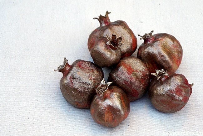 Dried and painted pomegranate