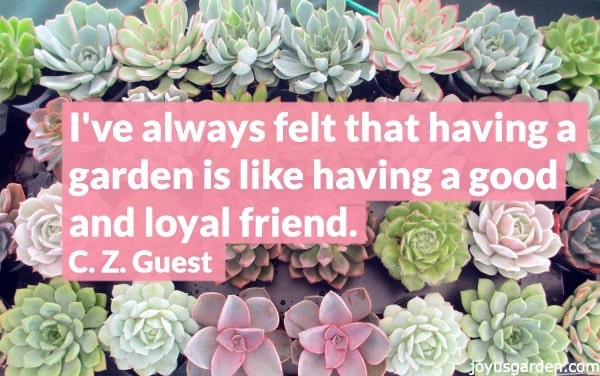 60 Inspiring Garden Quotes Adorable Garden Love Quotes