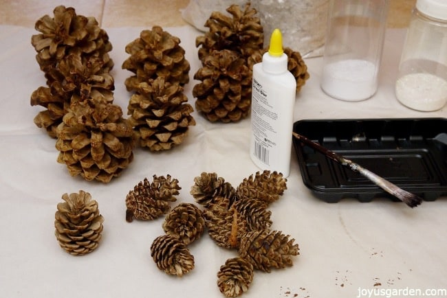 many small pine cones sit on a sheet of white paper next to school glue, a brush & plastic tray, & canisters of crystal glitters