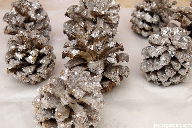 up close looking at pine cones glittered with mica flake glitter to give them an old fashioned look