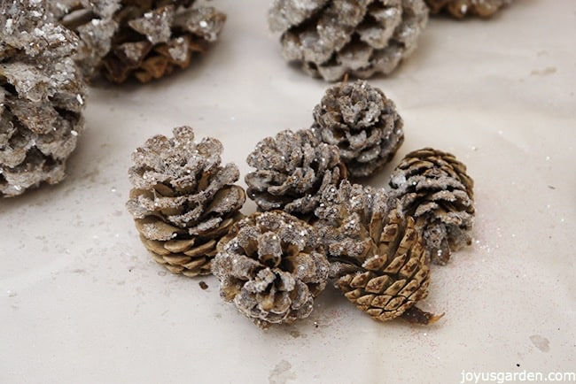 pine cones glittered with crystal glitter sit on a piece of white paper