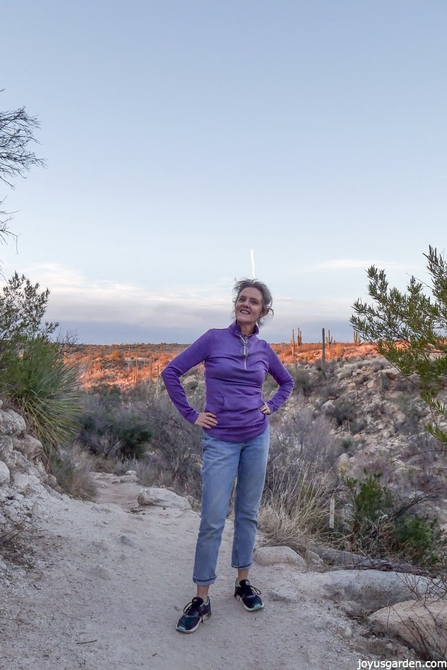 Sonoran Desert Hike