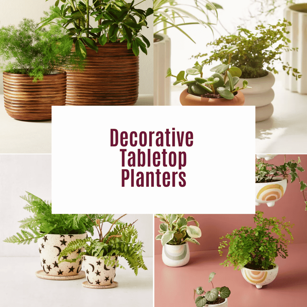 a collage showing 4 photos of pots for indoor plants the text reads decorative tabletop planters